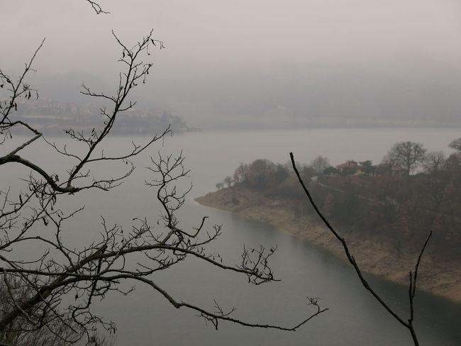 Bare Tree Branch Fog Foggy Lago Lago Del Turano Lake Mist Scenics Tranquil Scene Tranquility