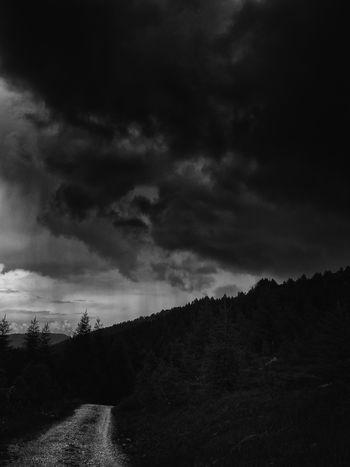 Il sentiero è chiaro e va verso Alpine Showcase June Black And White Mllml Altro, Oltre Playing With Thoughts Eye4black&white  Monochrome Photography Eye4nature Eye4photography  EyeEm Masterclass Landcape Mountain Non Urban Scene Non-urban Scene Outdoors Overcast Path Picoftheday Rain Raining Scenics Stormy Sky Stormy Weather Weather