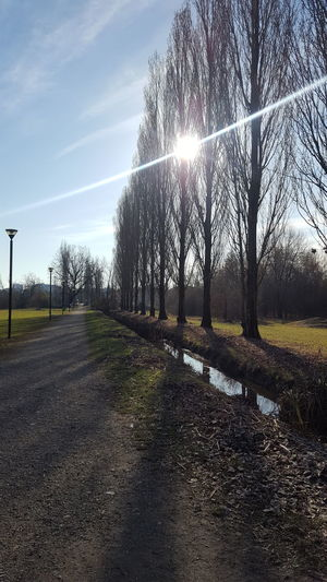 parco centenario Milano Sun Tranquility Sunlight Beauty In Nature Tranquil Scene Day Nature Sky Scenics
