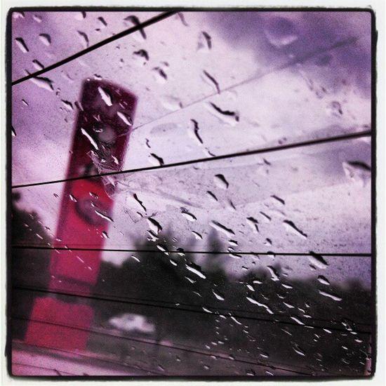 Rain Storm Strips Maccas Mcdonalds Raindrops Bliss