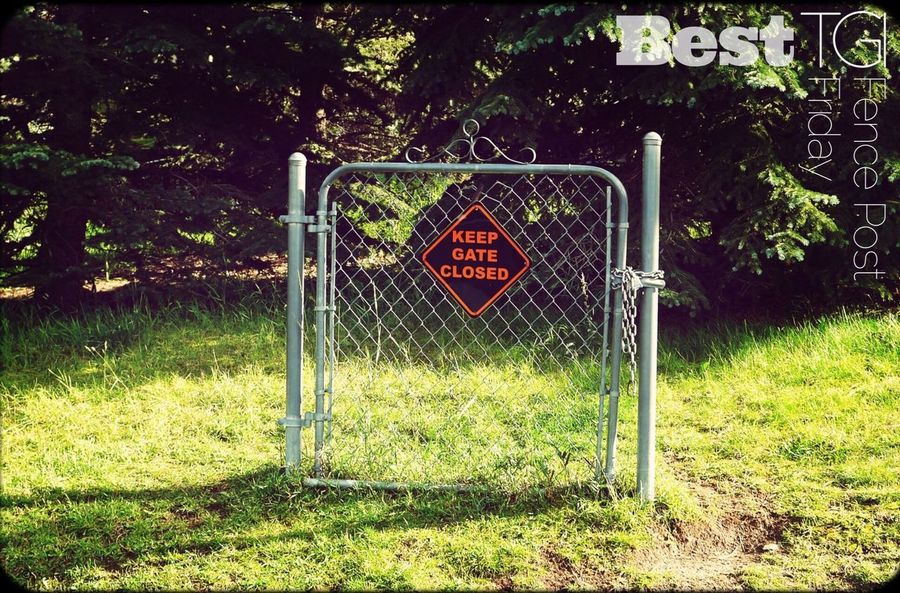 "For some time I have contemplated creating a ""Best"" TGI Fence Post Friday recognition. Today's VERY humorous post by @Zhyk. was the impetus for me to follow through on that idea. So while there is a fair amount of Friday left in much of the world I suspect all would agree that it would be a challenge to top this one. Also, please stop by Scott's gallery to see his many great pics. Congrats Scott and thanks for agreeing to be the first ever addition to the Best TGI Fence Post Friday album In addition, I want to thank each of you contributors to the TGI Fence Post Friday album for tagging all your great pics with our fun little album name. ✨ Humor"