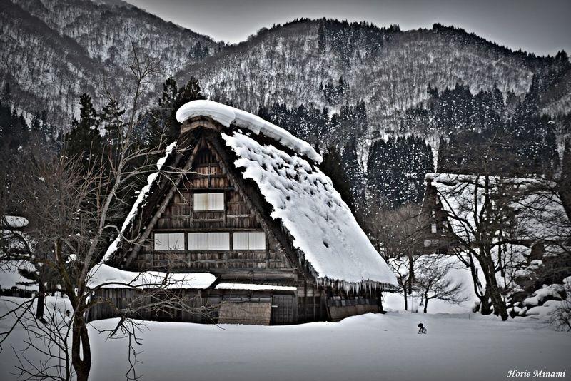 白川郷 EyeEm Selects EyeEm Gallery EyeEmNewHere EyeEm Best Shots Snow Winter Cold Temperature Frozen Mountain Weather Nature