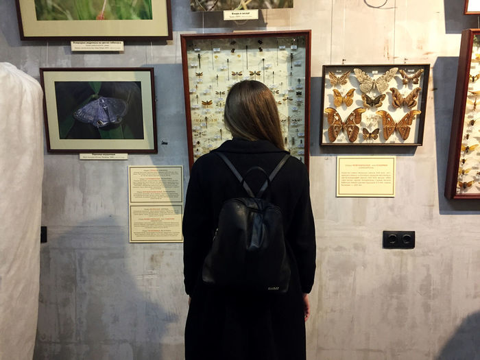Rear view of woman standing in museum