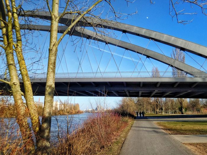 Frühlingsgefühle Betterlandscapes Clear Design Language In Architecture Bridge Design Walking Along The River Spring Is In The Air Riverscape Frankfurt Am Main Germany🇩🇪 Water Tree Clear Sky Bridge - Man Made Structure Sunlight Blue Sky Architecture Close-up Covered Bridge Underneath Railway Bridge Overpass The Architect - 2018 EyeEm Awards