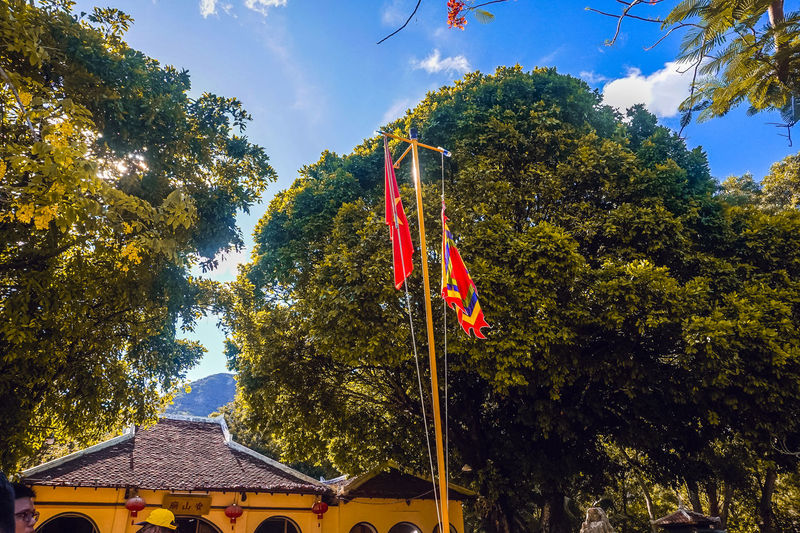 Low angle view of flag amidst trees against sky