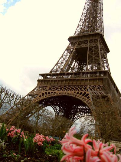 Flower Famous Place Tower Architecture Tourism Travel Destinations Built Structure International Landmark Eiffel_tower  Low Angle View Sky Outdoors Paris Paris, France  Paris ❤ Paris Je T Aime