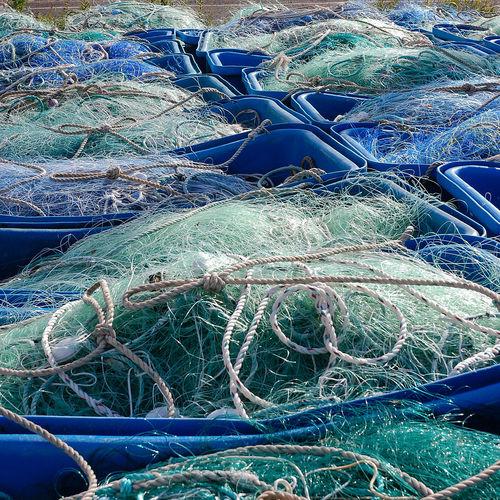 Bretagne Brittany Filet Fishing Harbour Peche