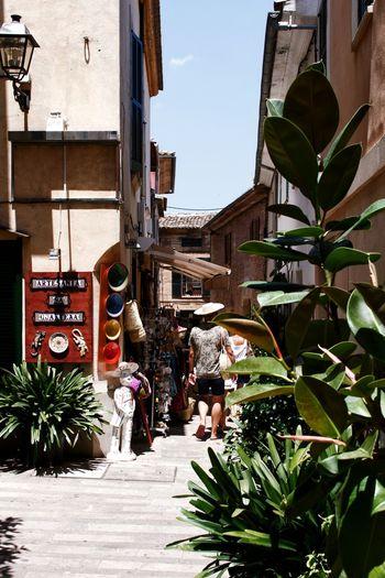 Alcúdia-Mallorca