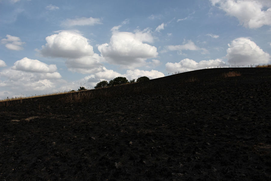 Burnt. Fire Damage Agriculture Beauty In Nature Blue Sky Burnt Grass Cloud - Sky Day Dirt Environment Field Grass Fire Horizon Over Land Land Landscape Nature No People Non-urban Scene Outdoors Rural Scene Scenics - Nature Sky Tranquil Scene Tranquility