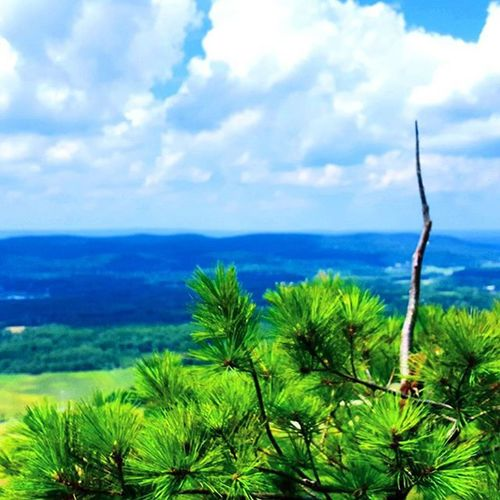 Atop the stairway to heaven. Kelleymediaproductions Art Sky Clouds Trees Horizon Nature Naturephotography Hiking Hikingphotography Outdoors Color Colorphotography Photography Photographersofinstagram Stayrad