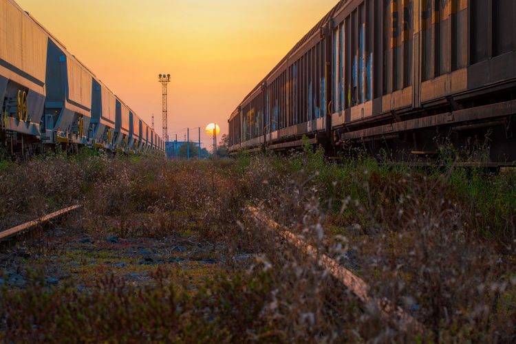 Freight Trains On Field During Sunset