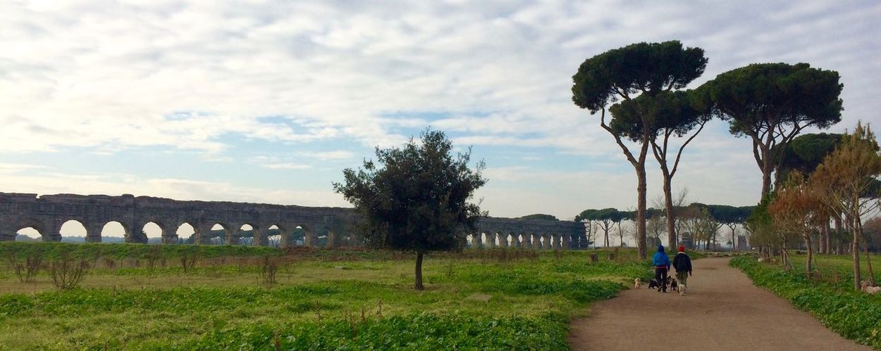 Aquaduct Beauty In Nature EyeEm Landscape Eyeem Nature EyeEm Nature Lovers Landscape Of Italy Parco Degli Acquedotti Protecting Where We Play Roma Rome The Way Forward Walking Around The City  Wintertime Urban Lifestyle In The City Doglife Landscapes With WhiteWall