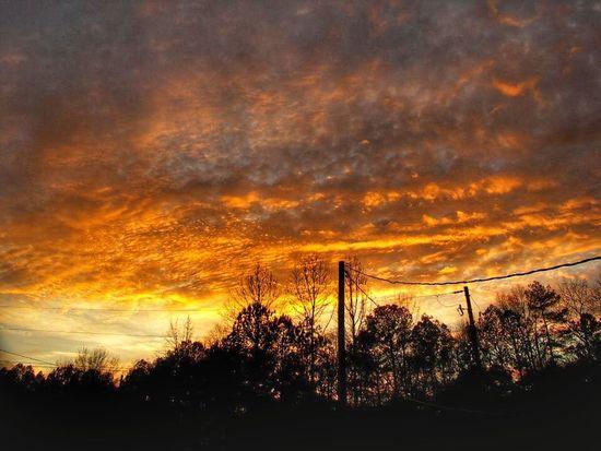 Brilliant sunset on a cold fall evening last year. WeatherPro: Your Perfect Weather Shot EyeEm Best Shots - Sunsets + Sunrise Sunset #sun #clouds #skylovers #sky #nature #beautifulinnature #naturalbeauty #photography #landscape Cloud Porn