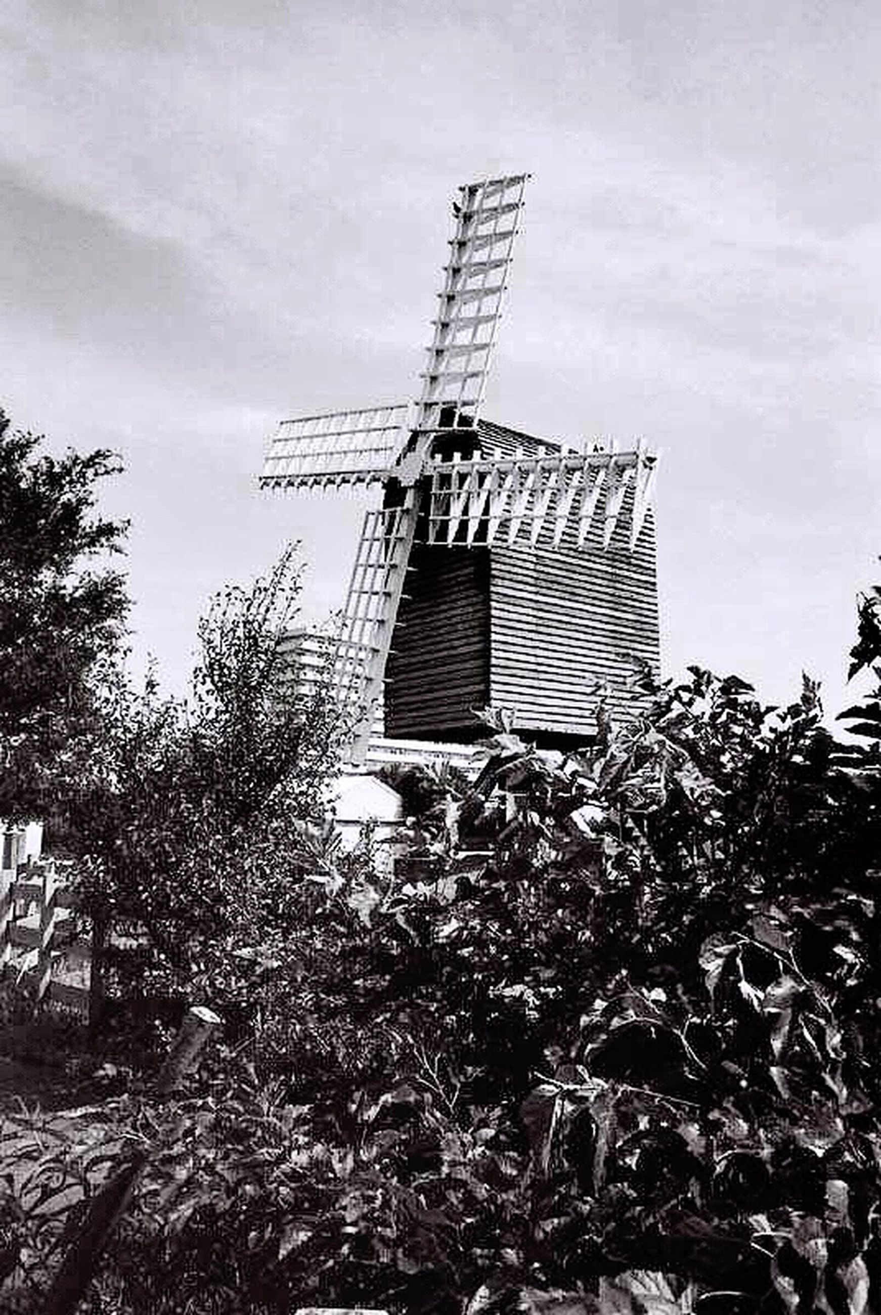 built structure, environmental conservation, windmill, renewable energy, architecture, fuel and power generation, alternative energy, wind turbine, traditional windmill, building exterior, wind power, sky, rural scene, low angle view, field, tree, technology, plant, growth, day