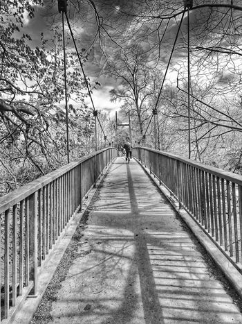 Foot Bridge Over Water Foot Bridge Old Man On A Bike People Watching For The Love Of Trees ~ For The Love Of Black And White Enjoying The Sun Walking Around Shadows Shadow And Light Branches And Sky Hugging A Tree Into The Distance Walk This Way Light And Shadows Adapted To The City DistanceMeansNothingWhenSomeoneMeansEverything The Graphic City