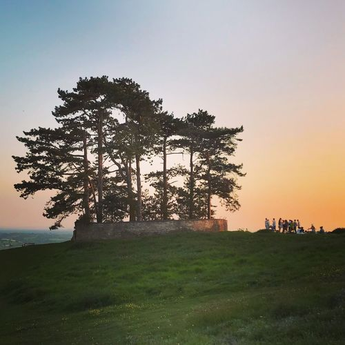 Wotton Hill at sunset Wotton Hill Wottonunderedge Sunset Sky Tree Plant Beauty In Nature Grass Nature Outdoors Environment Landscape Tranquil Scene