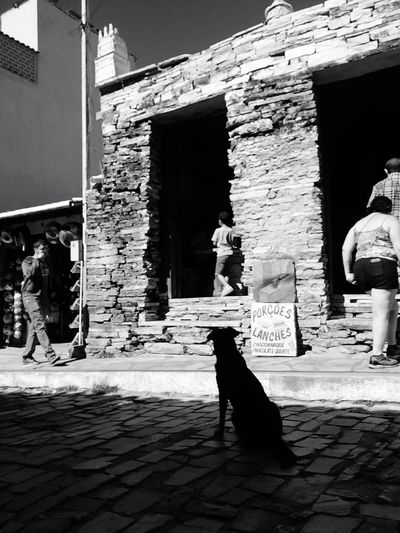 EyeEm Black And White IPhoneography Art Photography Amo Fotografar EyeEm Best Shots - Black + White Iphone5s Naton Ds Fotografia Vascocam Curtisbphotos  A Vida é Bela Taking Photos Light And Shadow Cachorro EyeEm Dogs Ruas Das Cidades Minasgerais MuitoAmor