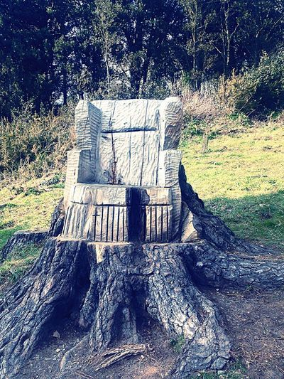 « The wooden Chair » Wood Chair Lol :) Cute Taking Photos Hello World Enjoying Life Check This Out How Do We Build The World? Nature First Eyeem Photo