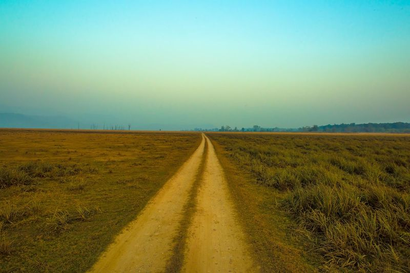 Never ending road #roadtrip Road Beauty In Nature Clear Sky Day Diminishing Perspective Distant Field Grass Infinity Infinity ∞ Journey Landscape Nature No People Outdoors Road Rural Scene Scenics Sky Sunset The Way Forward Tranquil Scene Tranquility