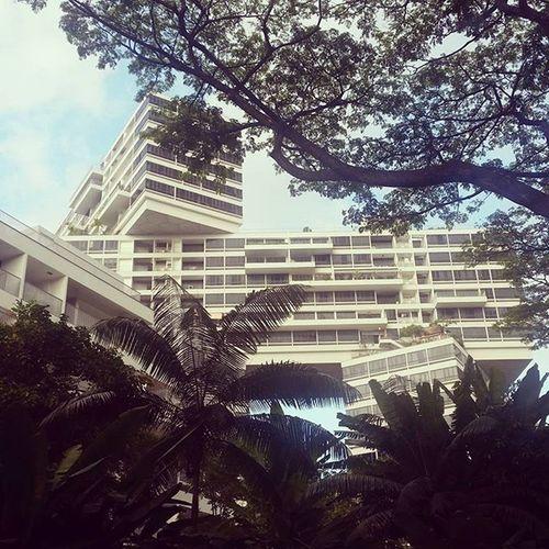 Architecture Sustainable Living Sustainabledesign Awardwinning Singaporebuilding Housing Modernhouse The Architect - 2016 EyeEm Awards