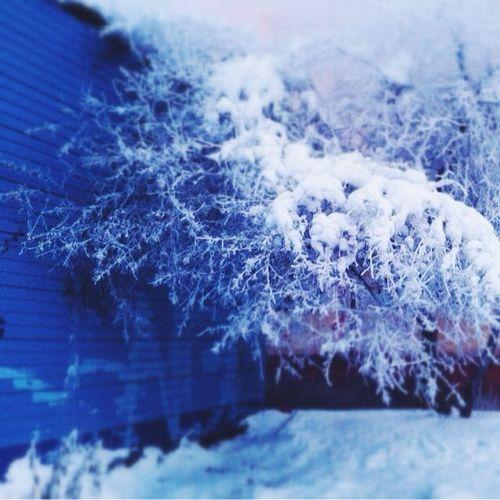 I Love Russian Winter Winter Russia Tyumen Siberia