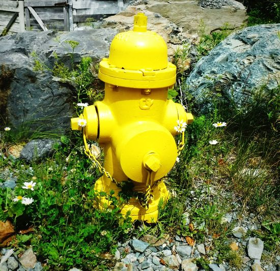 High angle view of yellow fire hydrant on rocks