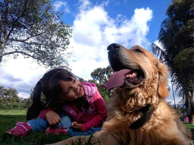Curiosidad Happiness Fun Sky Dog❤ Dog Love Dogs Dogslife Goldenretrievers Goldenretriever Goldenretrieversofinstagram Nature Golden Landscape_Collection Landscapes With WhiteWall Landscape Dog Domestic Animals