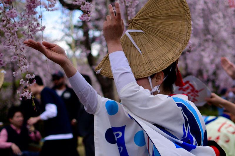 Awa Dance Holiday Japan Japan Photography Japanese Traditional Japanese Culture Sakura Chery Blossom Festival Streetphotography