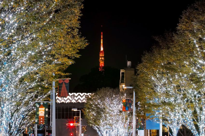 六本木ヒルズ、けやき坂通り✨ Tokyo Night Tokyo Tower Lighting Up The Night... Lighting Illumination Illuminated Taking Photos EyeEm Best Shots EyeEm Gallery From My Point Of View The Week on EyeEm Tree Built Structure Night Christmas Architecture Illuminated Building Exterior Decoration Christmas Lights Christmas Decoration Building Celebration Event