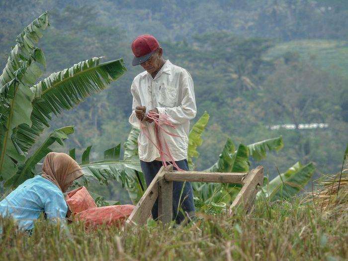 Full length of farmers in farm