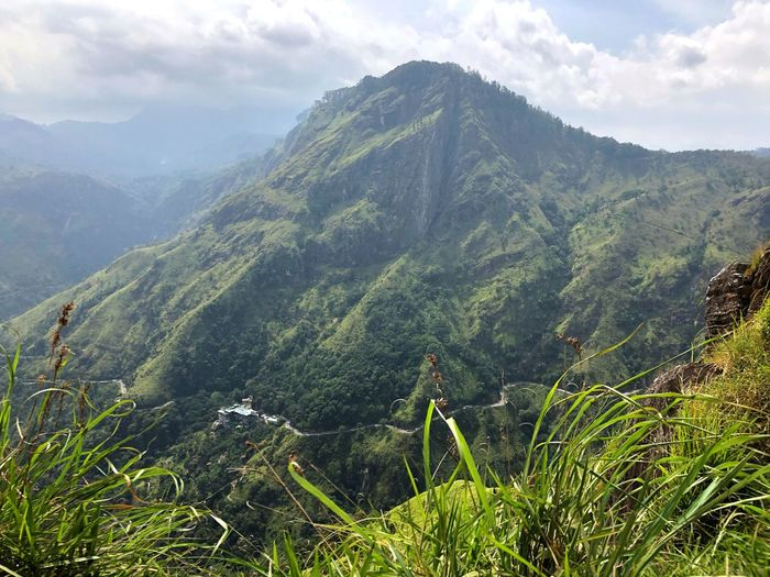 View to Ella Rock Scenic View Beauty In Nature Plant Scenics - Nature Mountain Tranquil Scene Tranquility Green Color Growth Environment Nature Landscape Mountain Range Idyllic