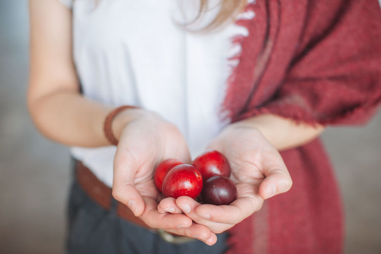 Close-up Day Detail Food Freshness Fruit Fruits Girl Holding Holding Hands Lifestyles Natural Organic Palms Person Plum Red Ripe Colour Of Life Color Palette