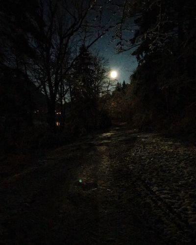 Night Moon Nature Dark Illuminated Tree Tranquility Outdoors Moonlight No People Scenics Beauty In Nature Astronomy Sky