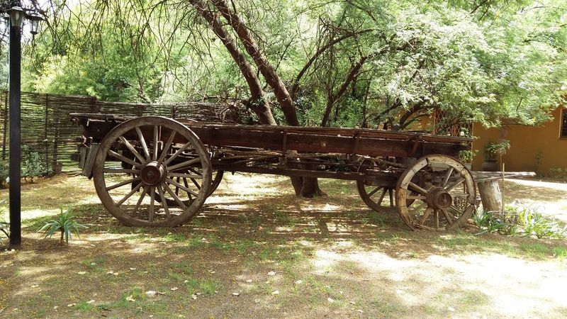 Final Resting Place From My Point Of ViewOld But Awesome Old Wagon In The Shade The Places I've Been Today The Purist (no Edit, No Filter)