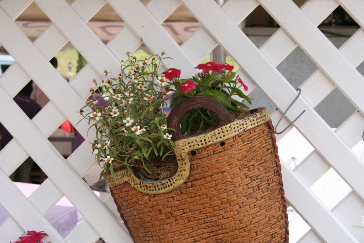 Flower Bouquet Celebration Flower Arrangement No People Outdoors Day Fragility Architecture Gift Nature Freshness Basket Hang