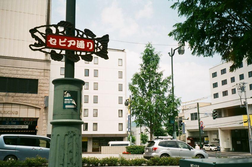 Somewherein Sapporo . Unpredictable Film Camera Canon Prima Zoom Kodak Ultramax 400 Fish Sign