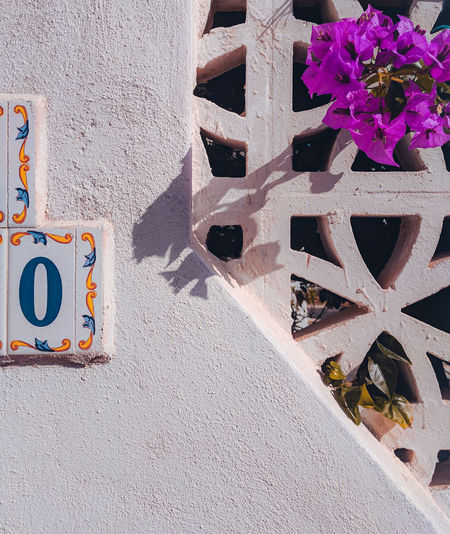 Wall, house number plate and a flower