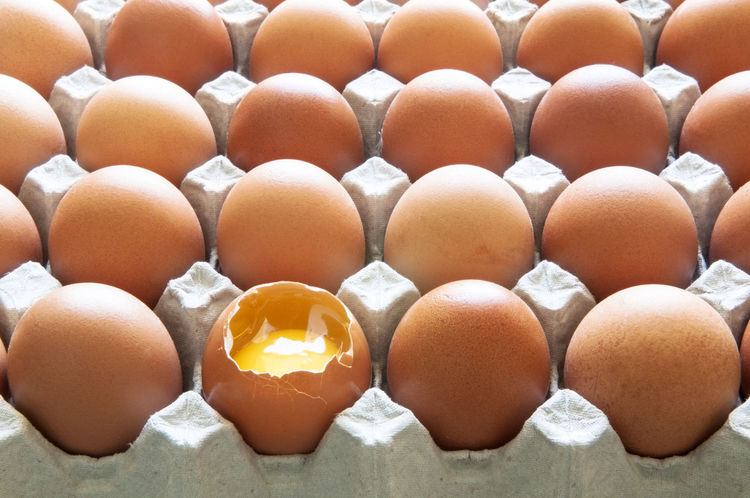 One broken egg in an egg tray of brown eggs. Broken Egg Backgrounds Brown Brown Eggs Close-up Egg Egg Carton Egg Tray Egg Yolk Food Fragility Freshness In A Row No People Raw Food Rows The Still Life Photographer - 2018 EyeEm Awards