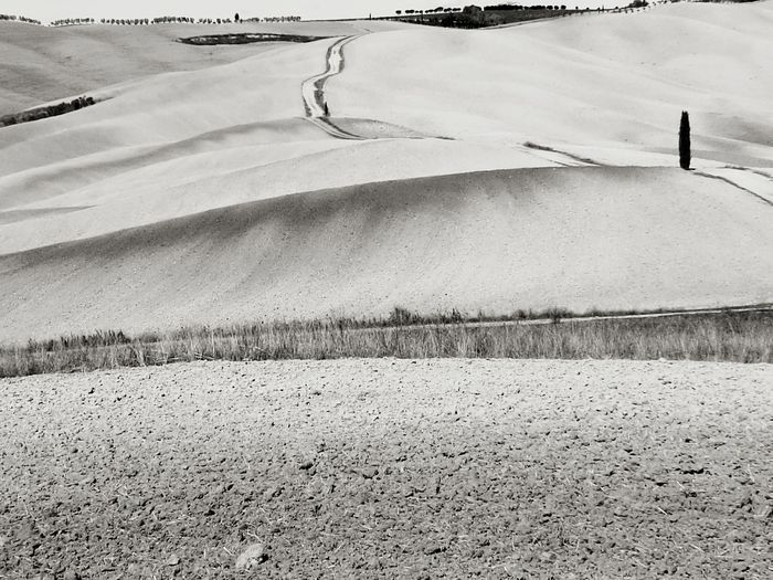 Loneliness Crete Senesi Terra Di Siena Val D'orcia EyeEm Selects Black And White Blackandwhite Photography Outdoors Day Nature Beauty In Nature
