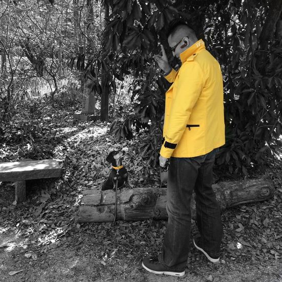Dachshund Dog Walking I Love My Dog Dogs