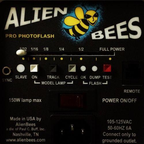 B800 Alien🐝bees....😏 Photographer Alienbees Strobes