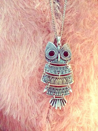 Owl Necklace Owl Necklace I LOVE PINK  Sweater Weather