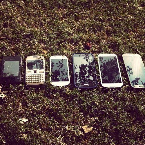 TelanganaSurvey Dayout Kabadi Phones