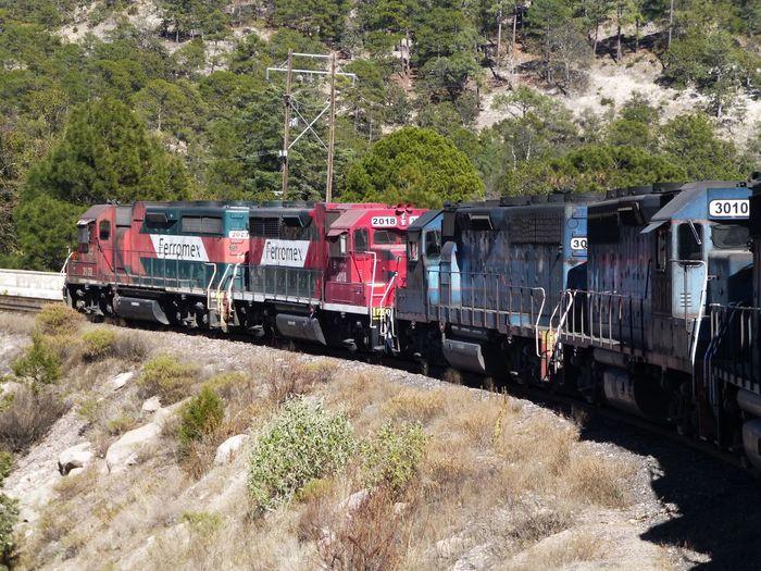 Copper Canyon Mexico Copper Canyon Mexico Trains Pacifico Pacifico Railway Landscapes