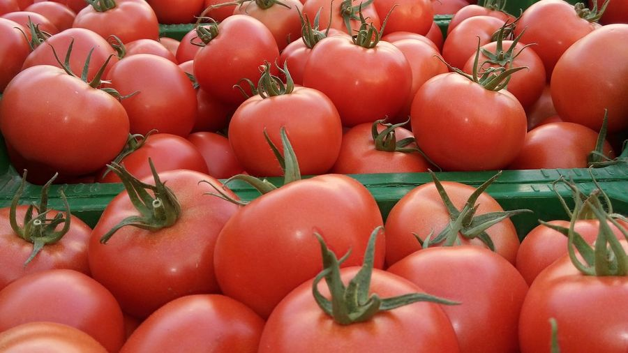 Close-up of tomatoes for sale in market
