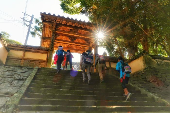 Built Structure Tree Architecture Leisure Activity Building Exterior 平戸 長崎 トレッキング 最教寺 秋 秋風 Hirado Nagasaki Japan Trekking Walk Temple Growth Tree Autumn Nature Sunlight Beauty In Nature Real People Sunshine