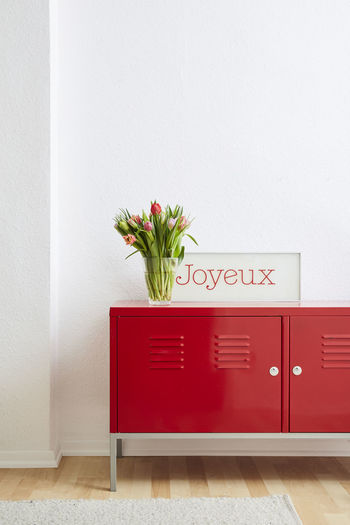 Red flower vase against wall at home
