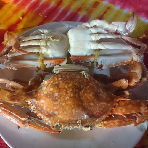 甲米 Krabi 螃蟹
