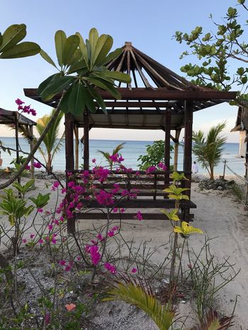 Been There. Sky Tranquil Scene Scenics Outdoors Landscape Beauty In Nature Tropical Paradise Sea Water Nature Built Structure Flower Plant Architecture Day Tree Beauty In Nature Green Color No People Travel Destinations Beach Growth