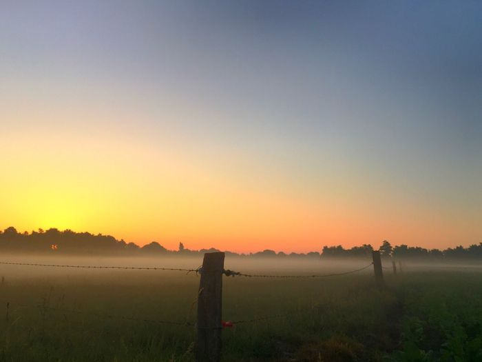 Fence around the morning mist Sky Sunset Scenics - Nature Beauty In Nature Tranquility Tranquil Scene Nature Water Orange Color Landscape Land Idyllic Field Clear Sky Copy Space Fence No People Environment Boundary Sun